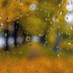 J. Bonstein ~ A park in the fall, through raindrops on my car window.