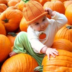 L. Singer ~ Cutest pumpkin in the patch