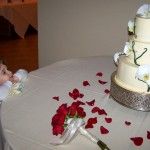 L. Singer ~ Imagining her own wedding one day (or at least eating the cake).